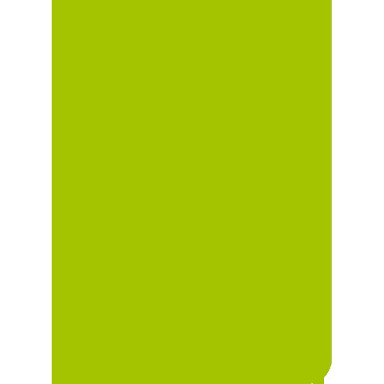 B2-logo-groen-retina-1